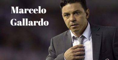 Frases de Marcelo Gallardo