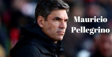 Frases de Mauricio Pellegrino