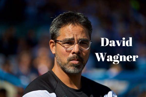Frases de David Wagner